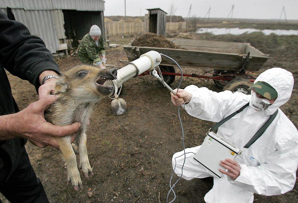 Лучевая болезнь  фото людей после чернобыля