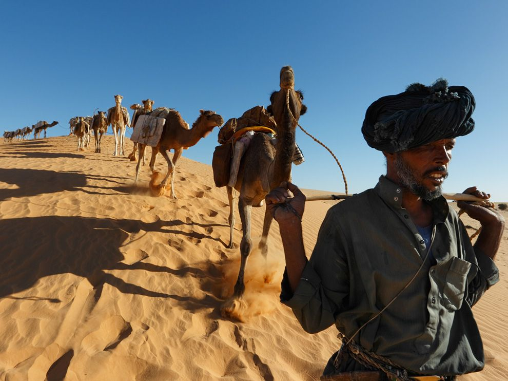 11 Обои для рабочего стола от National Geographic за февраль 2012