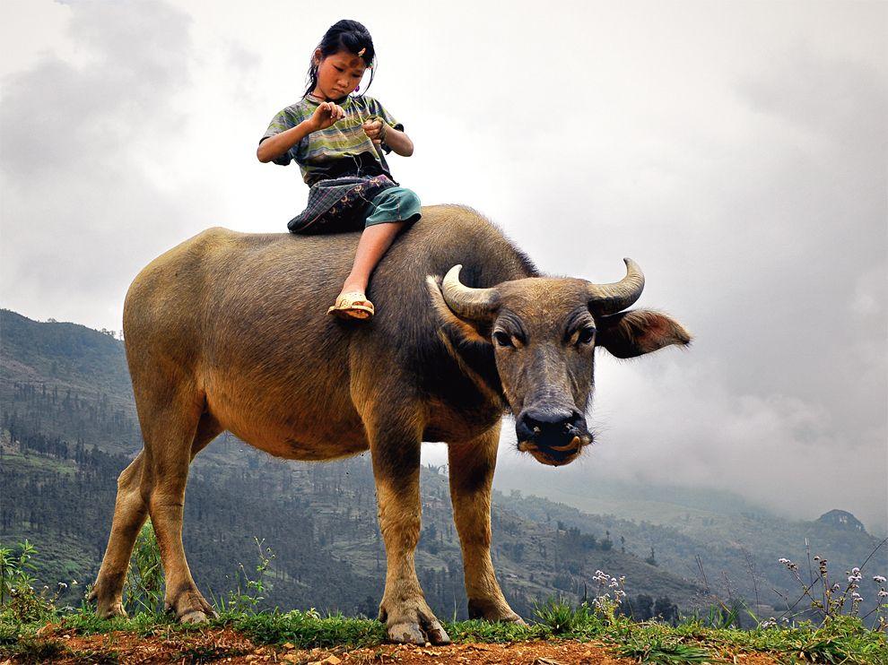 18 Обои для рабочего стола от National Geographic за февраль 2012