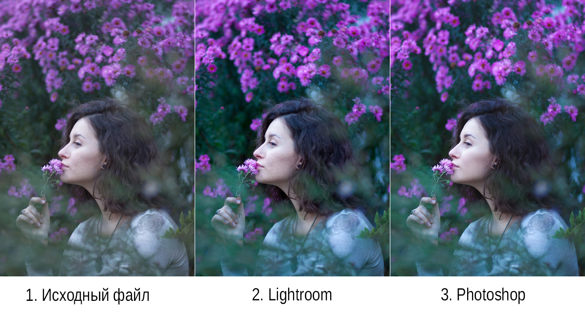 на сколько давить шумы при обработке фото возникает