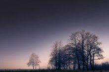 / Утро, туман, река Березина...