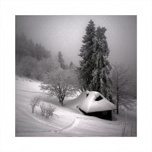 Уединение... / в первый день весны несколько карточек про зиму.... ВСЕХ С НАСТУПИВШЕЙ ВЕСНОЙ !!!