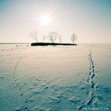 traces / Вилейское водохранилище