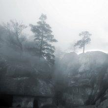 Про туман / Карпаты