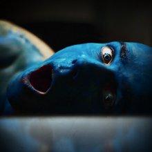 El color azul muerto / *****