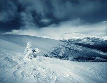 Зима / Карпаты, зима