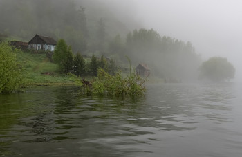 Утро и туман. / Большая вода.. туман на кордоне.