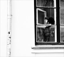 бойКОТ / коты, весна, бойкот=)