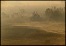 Рано утром в пятьницу / Туман и легкая дымка от горящих в знойное лето торфянников.