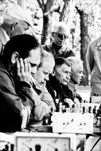 Май, парк и шахматы... / поклонникам индийской игры посвящается