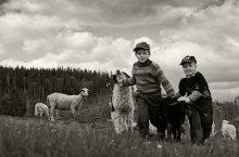 Дети полонины / Полонина - высокогорное пастбище в Карпатах