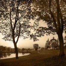 Тихий теплый вечер / Иногда на душе спокойно и тихо как этот  теплый весенний вечер. Тогда наступает гармония с окружающим миром.