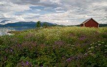 Жара / Аномальная температура на севере Норвегии. +30! Конечно фотография никак этого не отражает :), но нужно же было как-то назвать работу :)