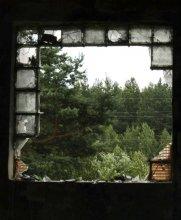 Из окна ... / .........