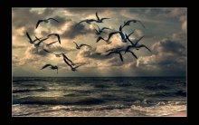И дышать Ею буду век...... / Я искала ее по свету Открывалась волнам лагуны Ничего до конца не спето Пережаты руками струны Пережато любовью сердце Значит, ты не услышан не был Мы, наверное, иноверцы Мы не ищем любви у неба  Две дороги-пути склею И афиш пелену скину И дышать, и дышать ею Буду век. Ей Любовь имя  Не желаю лукавить, знаю Будет горько иль будет кисло Я немало, о чем мечтаю Ты немного читаешь мысли Я искала ее, искала И удаче дышала в спину Высоко, как на южных скалах Я нашла! и Любовь ей имя...