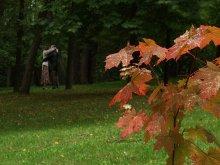 Осенний поцелуй / ...(После  жаркого лета?)