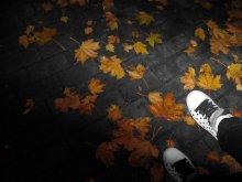 Осень листьями шуршала... / под ногами - листья, в сердце - твои письма..