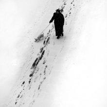 первый снег и дама с собачкой / ...........