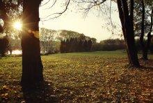 """""""Autumn Breath"""" / autumn breath"""