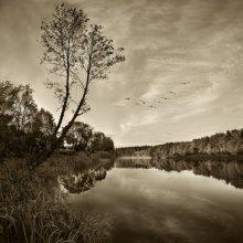 Туда, где тепло / Раннее утро. Река Вилия.