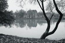 Old School / Loshitski Park