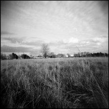 Поле / Kodak 120mm black and white, 320.