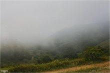 Туман / Дорогами к Демерджи