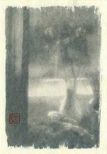 Pour Feliciter / Снято моноклем, цианотипный отпечаток, тонированный матэ Дорогие братья-белорусы и братья-фотографы! С Новым годом вас, радостных дней и творческих открытий! :)