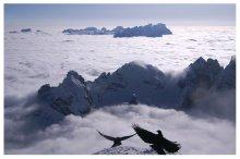 """Танцы над облаками / с того же места что и в предыдущем снимке, на 90 градусов в обратную сторону, стоя в полутора метрах от края пропасти. из серии """" Альпийские зарисовки """""""