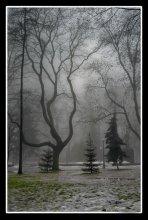 О кривом и ровном / зима 2008 Киев