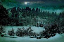 горно-лесной житель / живут же люди..