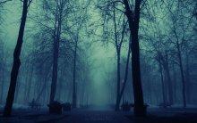 Туман / .........