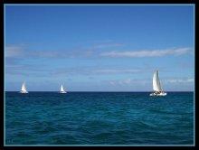 Браславы - снежаньская рэгата 2006 / Мороз и солнце, день чудесный... :) Раскрою секрет, на самом деле - это на Маврикии, Индийский океан.