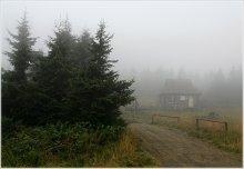 Усталых путников приют... / Идет моросящий дождь, густой туман прячется за ели... пара шагов - и не видно ни зги...