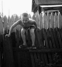 На заборе / *****