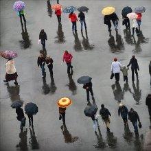 Дождливый день / Конец сентября. Дождь идет.