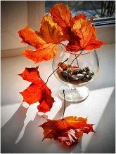 Осенний натюрморт / Лисьья клена на подоконнике городской квартиры