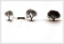 *=*  * / снежный минимализм