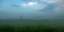 Туманная / Вечер 1.06.10, неподалеку от Ильи