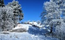 зима и солнце день чудесный / редко у нас зима бывает но если то .......