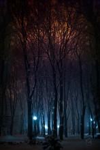 Зимний свет / вот так вот иногда бывает во время плотного, но мелкого снега в воздухе )