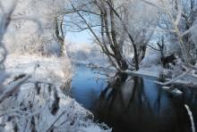 Зимнее утро / хороший зимний день