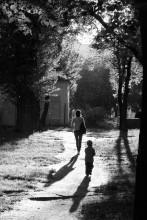 Навстречу свету / Летний денек, белые точечки - тополиный пух