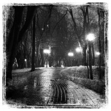 Ночной парк...Vol.2 / ........................