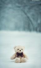 Нежность / Медведь =)