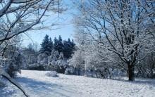 Зимние краски / .....
