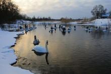 на закате / последние морозные дни февраля.