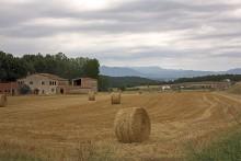 Сельский пейзаж / +++++ бкбкб