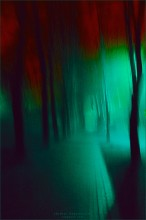 [ The Phantom ] / ...набродил ночами