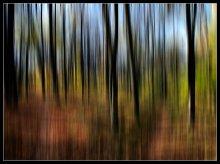 Мелодия осеннего леса.... / тоже заразился.....очень захотелось попробовать